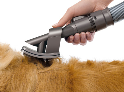 Just Bought A Dyson Dc43 Animal Golden Retrievers